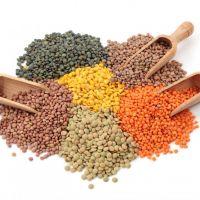 Чечевица пищевая (лат. Lens culinaris)