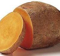 Батат (лат. Ipomoea batatas)
