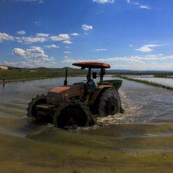 Ход на 150 миллиардов долларов в сельском хозяйстве