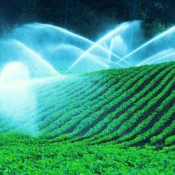 Новый период в сельскохозяйственном поливе и консолидации земель
