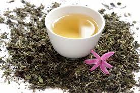 Белый чай. (White tea)